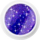Farebný holografický UV gél – 341 Dark Purple Shadow, 5g