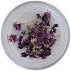 Ozdobné sušené kvietky - fialové