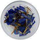 Modro-fialové sušené kvietky
